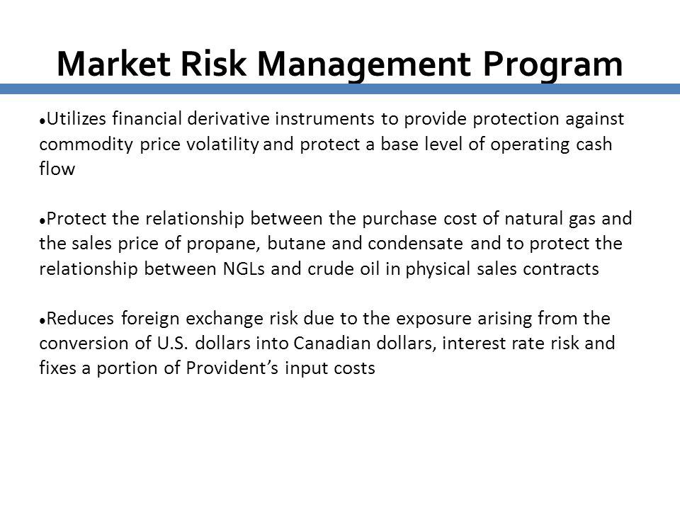 Market Risk Management Program