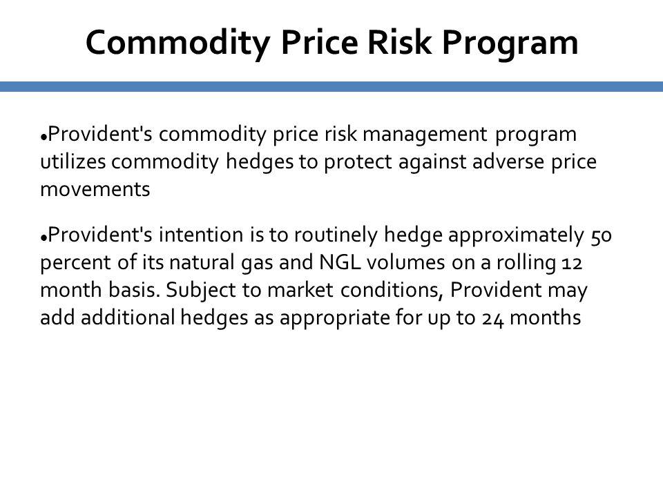 Commodity Price Risk Program