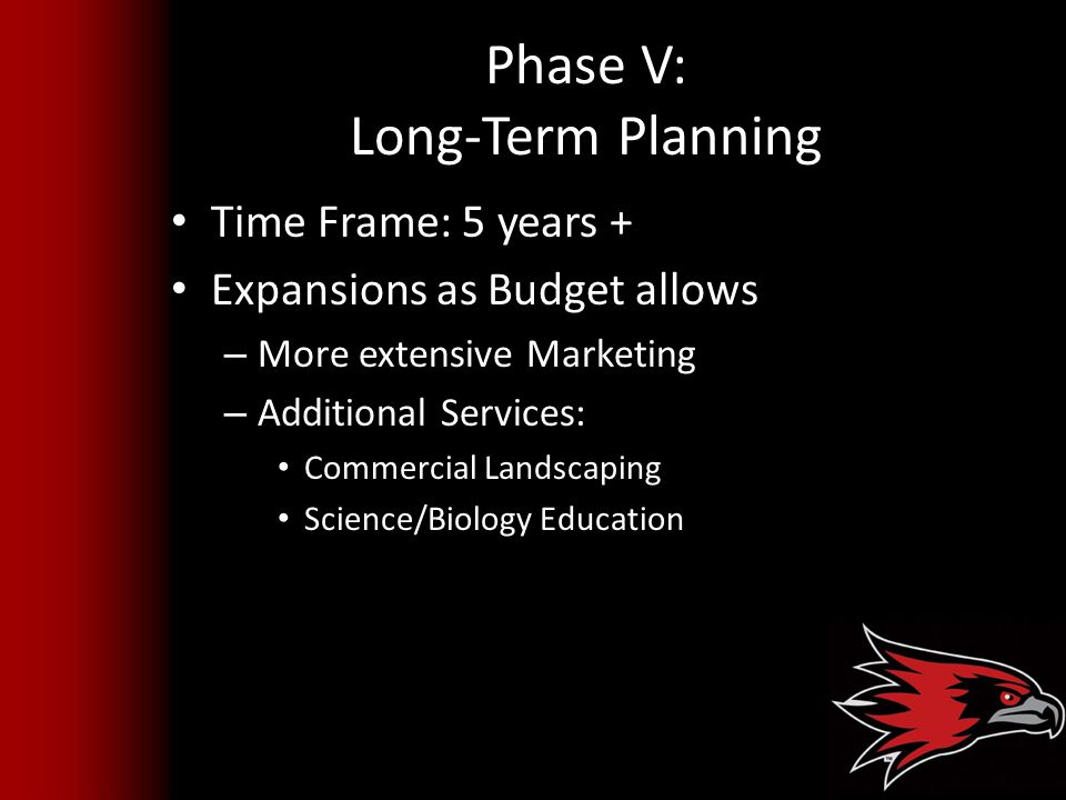 Phase V: Long-Term Planning