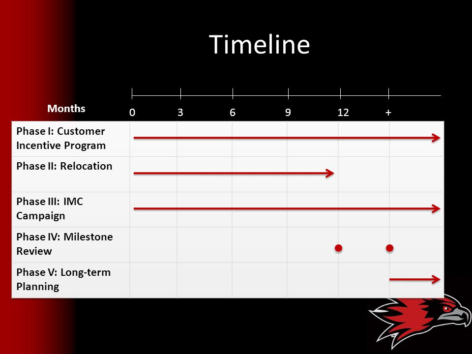 Timeline Months 3 6 9 12 + Phase I: Customer Incentive Program