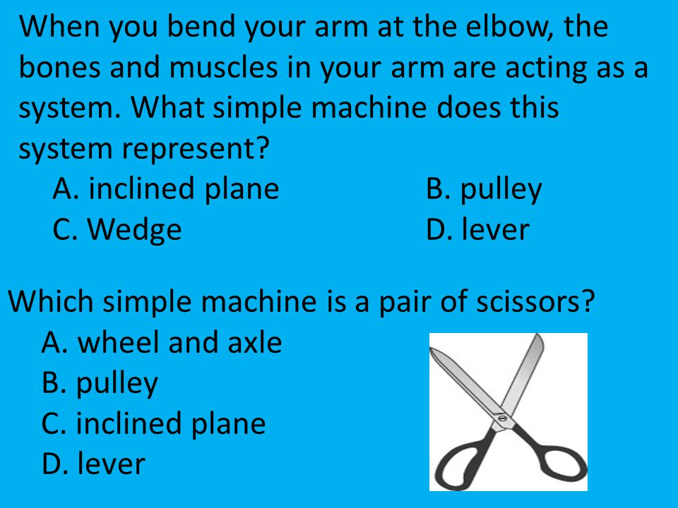 When you bend your arm at the elbow, the bones and muscles in your arm are acting as a system. What simple machine does this system represent