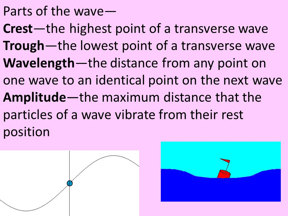 Parts of the wave— Crest—the highest point of a transverse wave. Trough—the lowest point of a transverse wave.