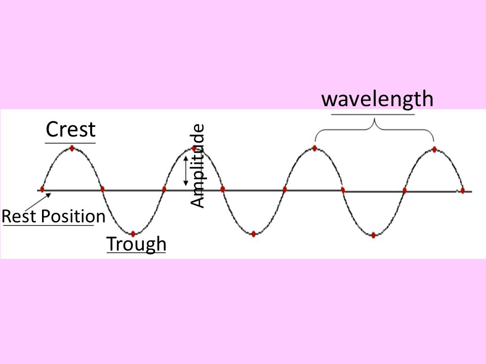 wavelength Crest Amplitude Rest Position Trough