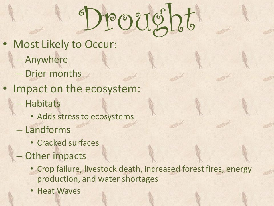 Drought Most Likely to Occur: Impact on the ecosystem: Anywhere