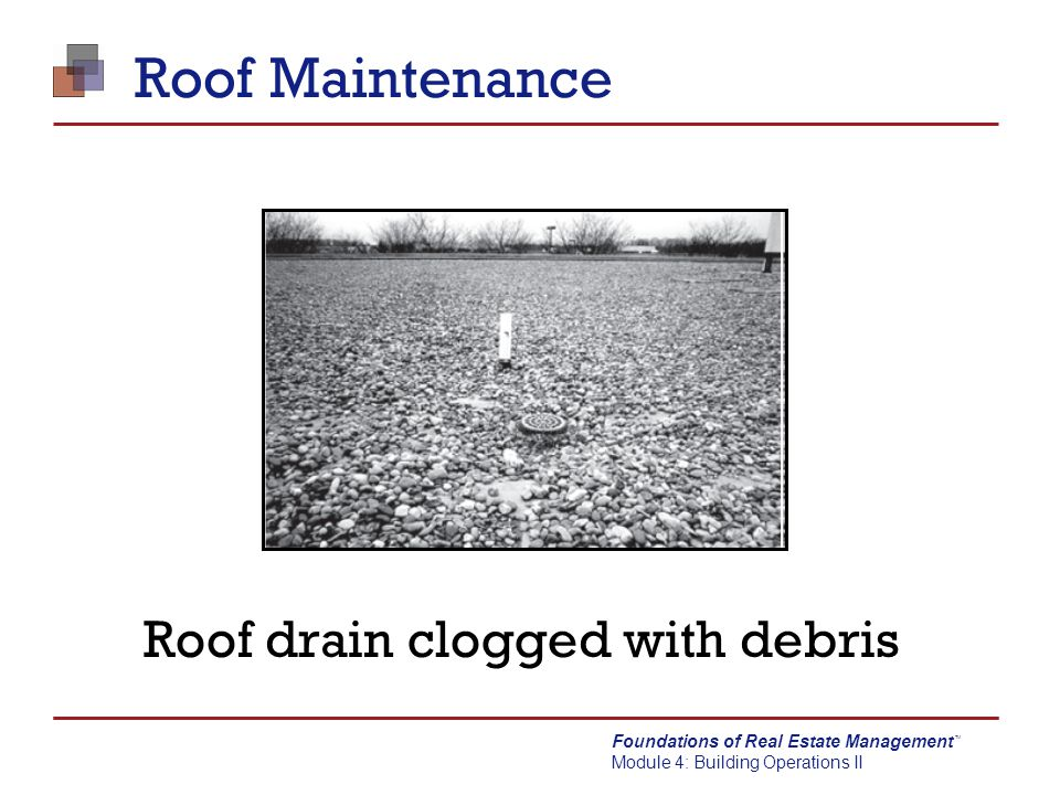 Roof drain clogged with debris