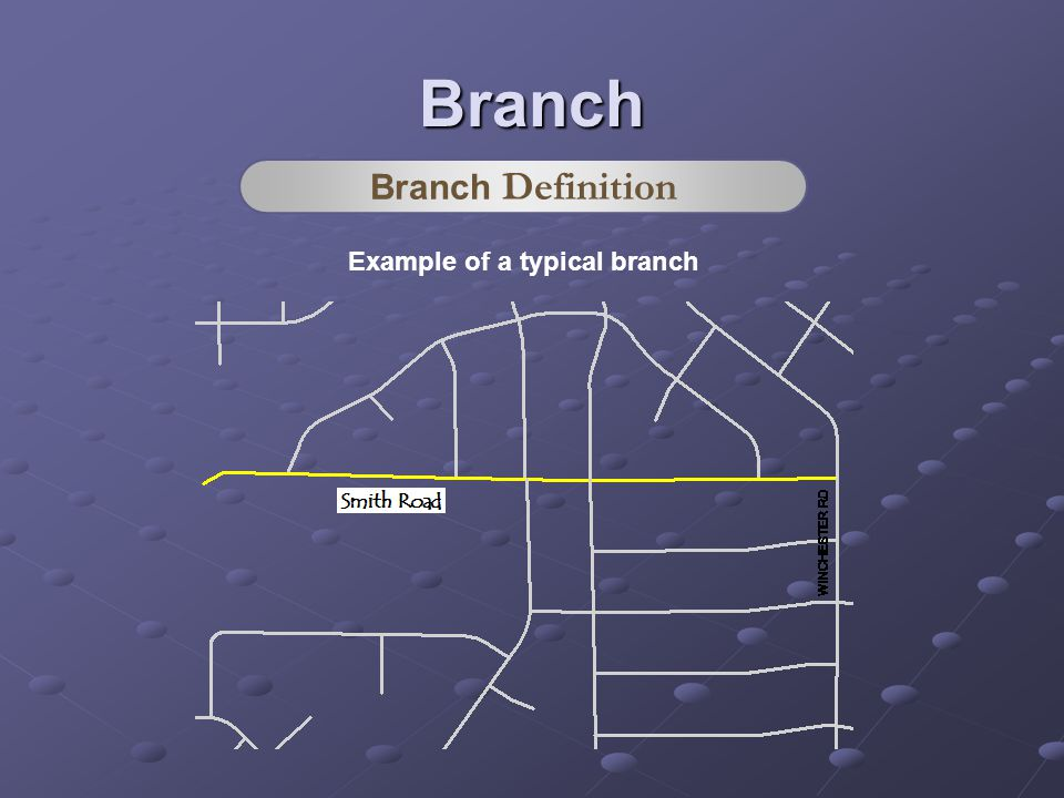 Example of a typical branch