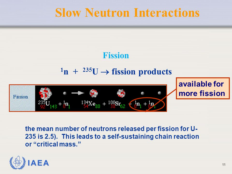 Slow Neutron Interactions