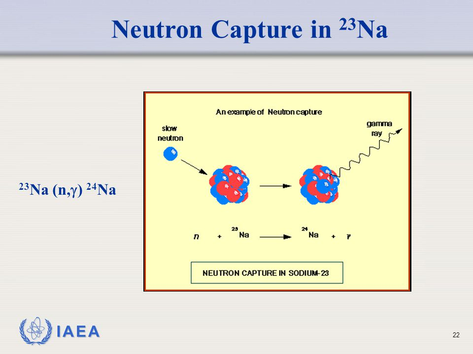 Neutron Capture in 23Na 23Na (n,) 24Na