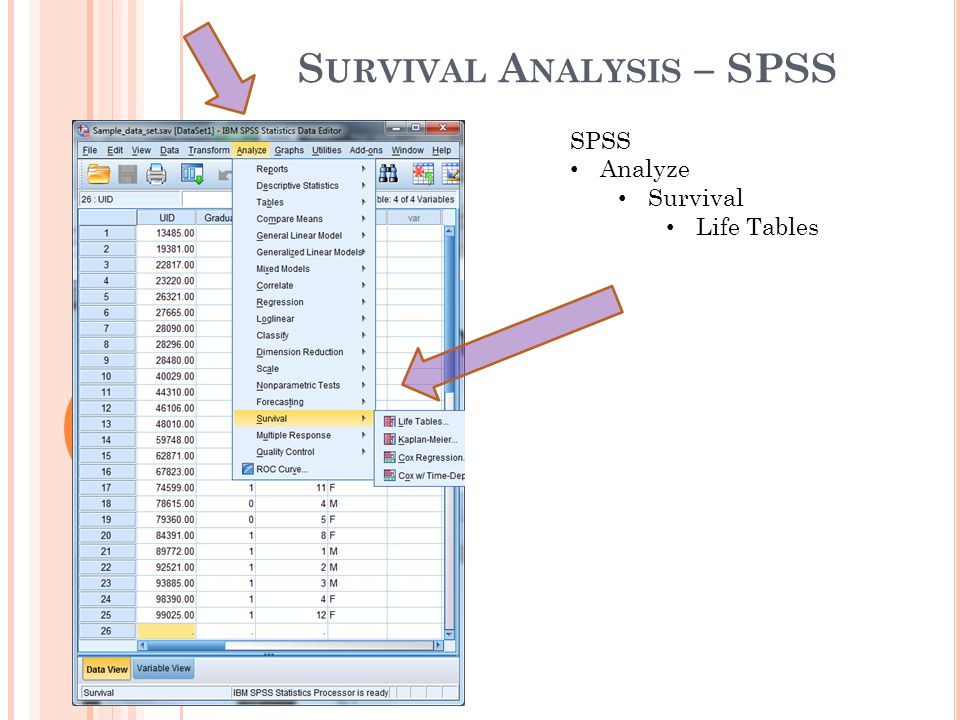 Survival Analysis – SPSS