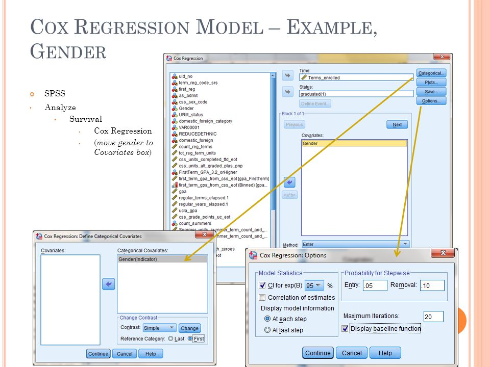 Cox Regression Model – Example, Gender
