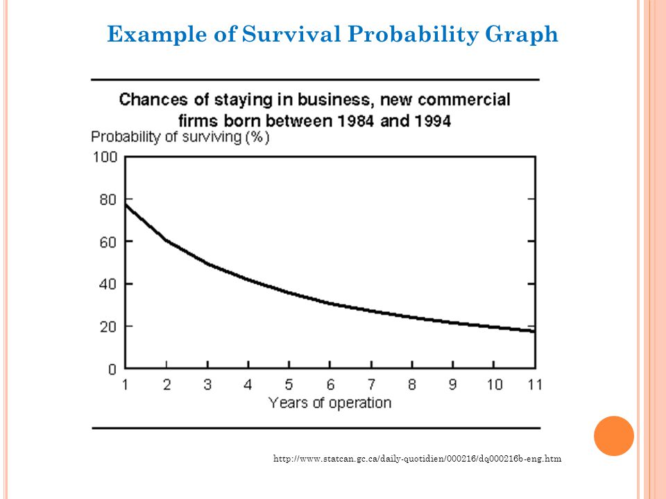 Example of Survival Probability Graph