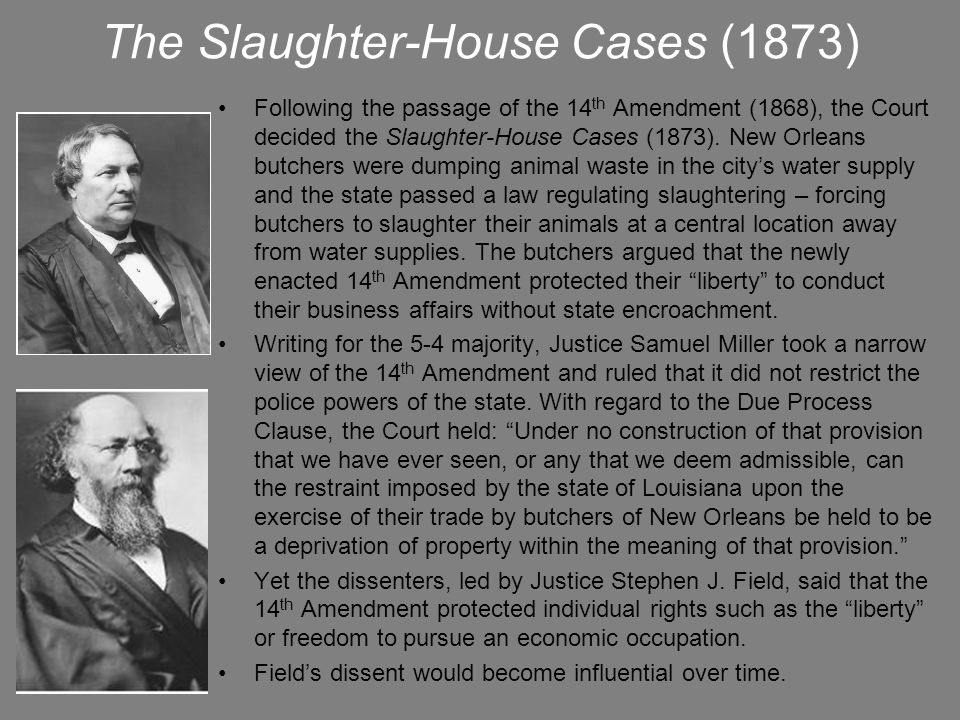 The Slaughter-House Cases (1873)