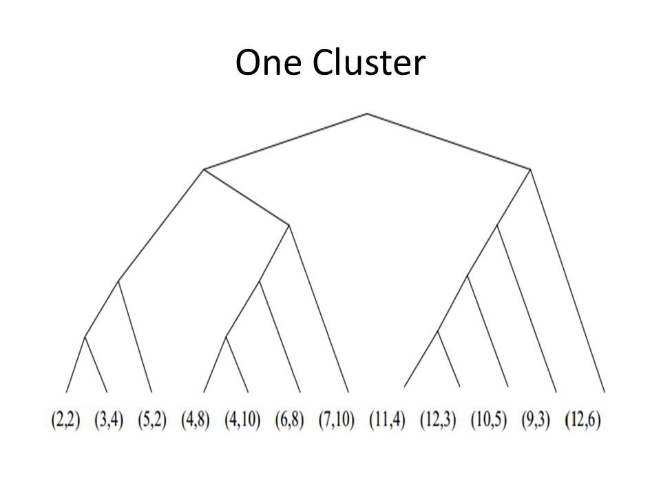 One Cluster