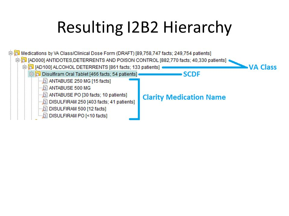 Resulting I2B2 Hierarchy
