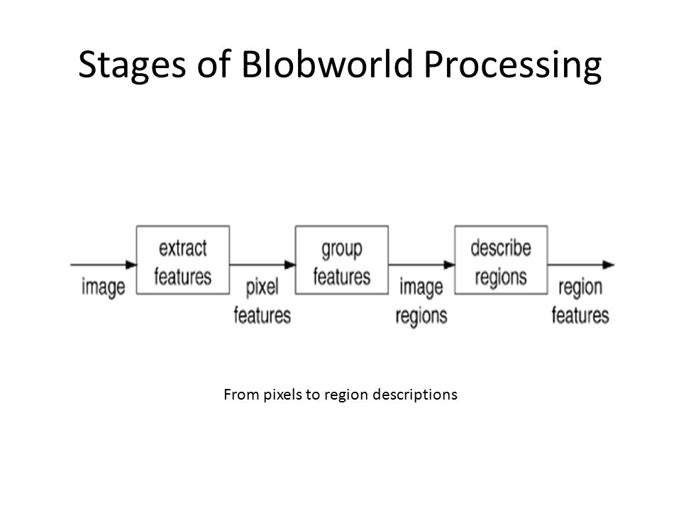 Stages of Blobworld Processing