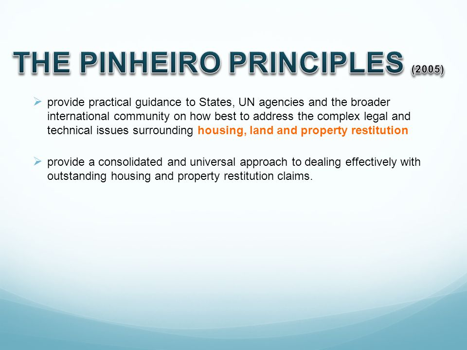 THE PINHEIRO PRINCIPLES (2005)