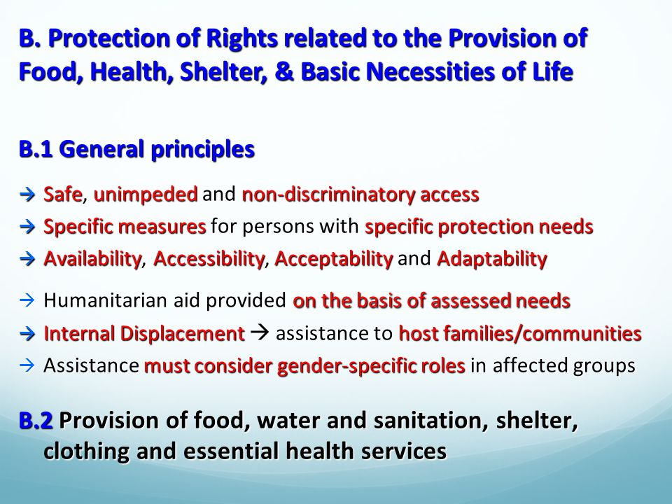 B. Protection of Rights related to the Provision of Food, Health, Shelter, & Basic Necessities of Life