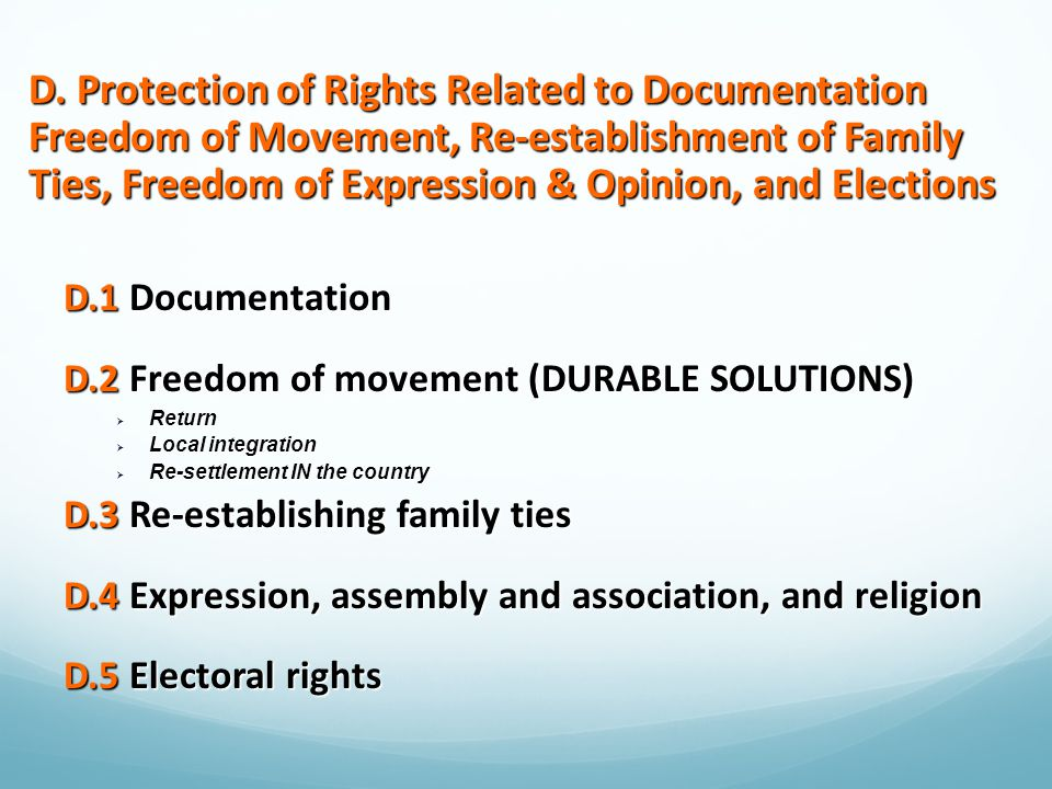 D. Protection of Rights Related to Documentation Freedom of Movement, Re-establishment of Family Ties, Freedom of Expression & Opinion, and Elections