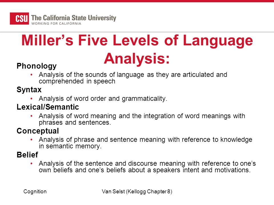 Miller's Five Levels of Language Analysis: