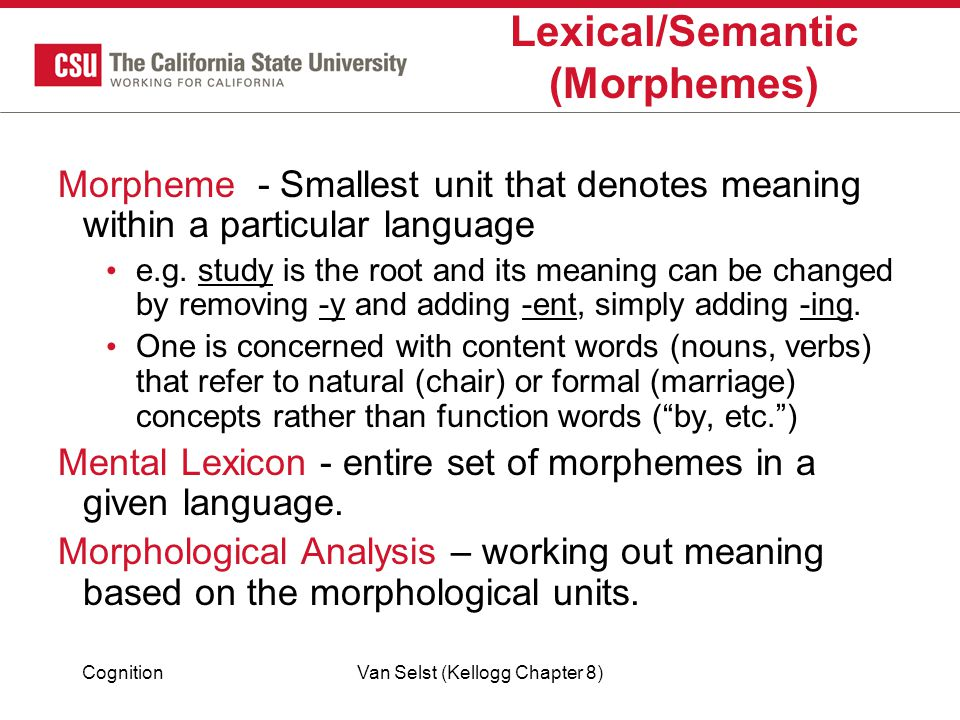 Lexical/Semantic (Morphemes)