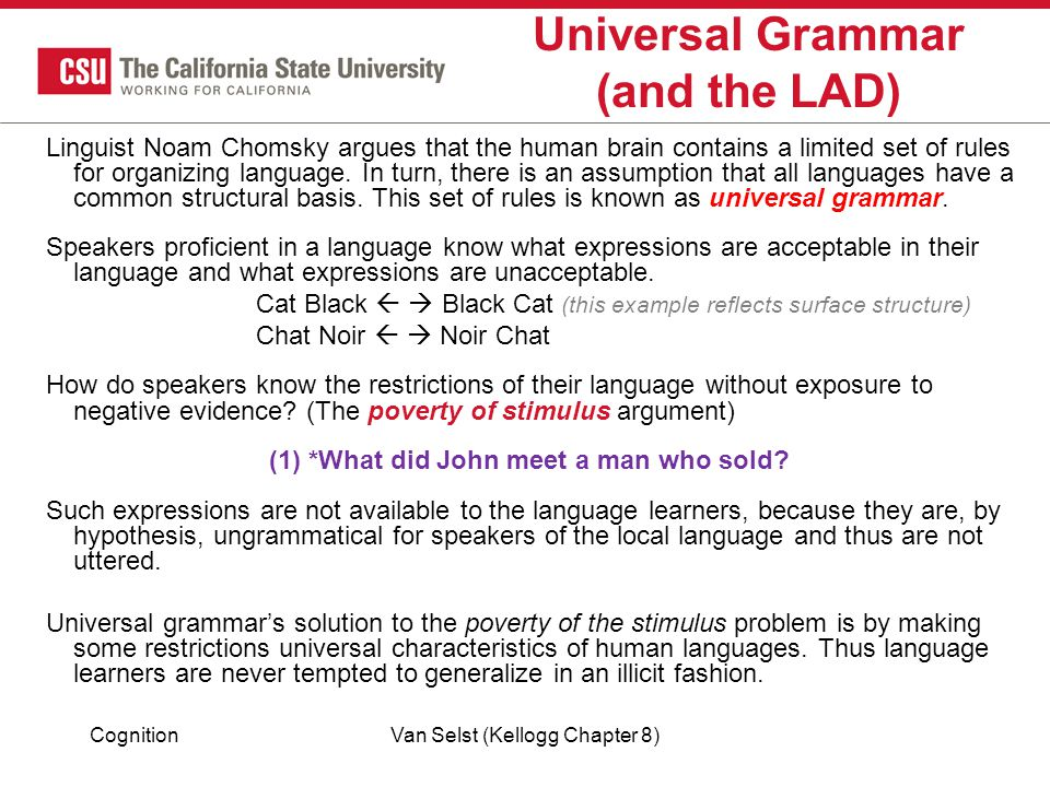Universal Grammar (and the LAD)