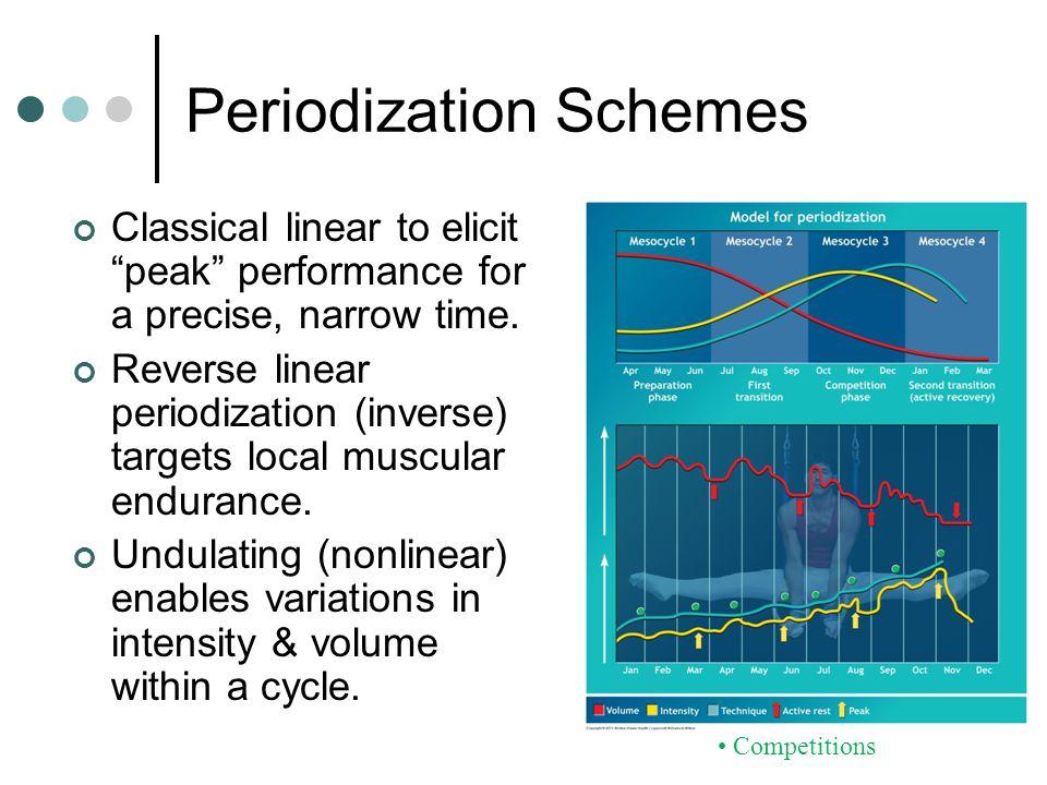 Periodization Schemes