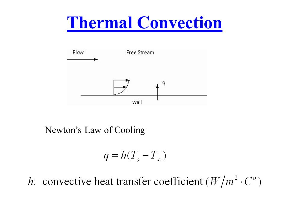 Thermal Convection Newton's Law of Cooling