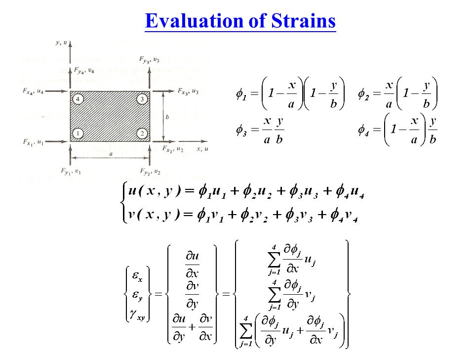 Evaluation of Strains