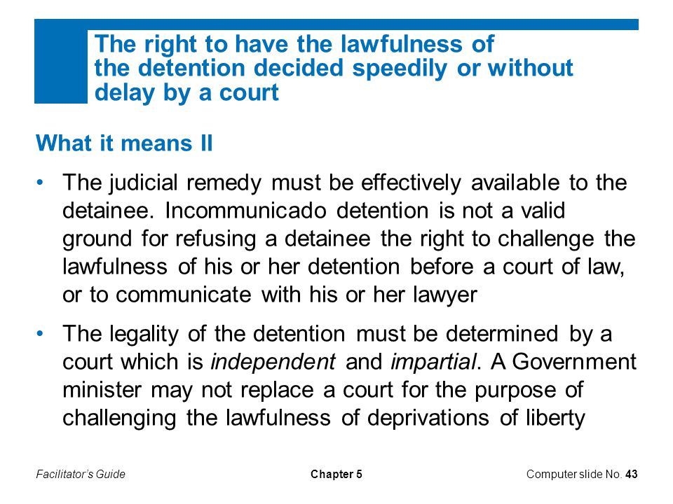The right to have the lawfulness of the detention decided speedily or without delay by a court
