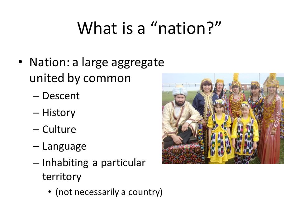 What is a nation Nation: a large aggregate united by common Descent