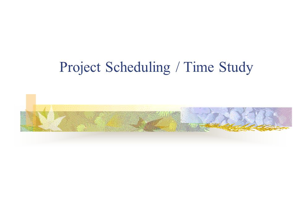Project Scheduling / Time Study