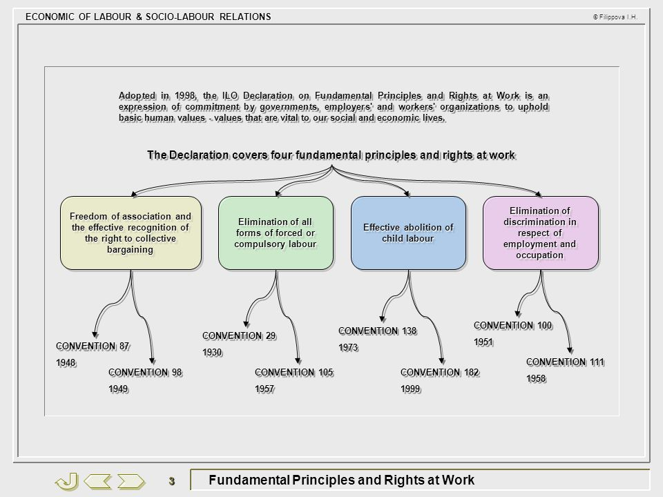 Fundamental Principles and Rights at Work