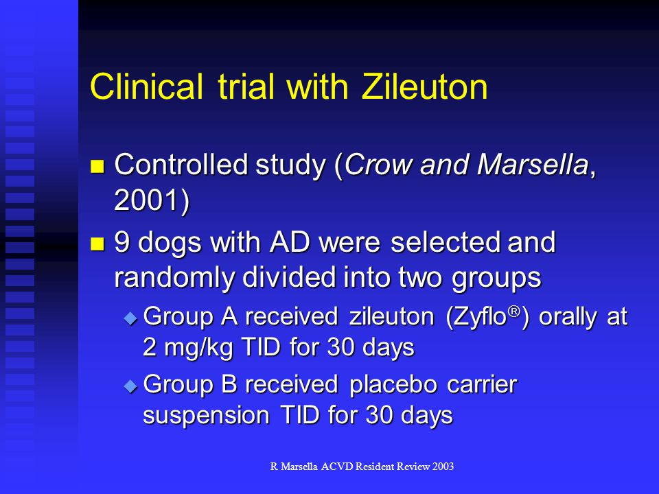 Clinical trial with Zileuton