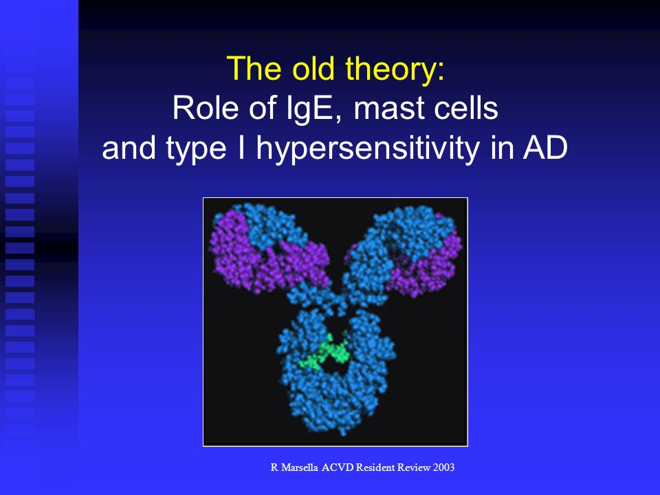 and type I hypersensitivity in AD