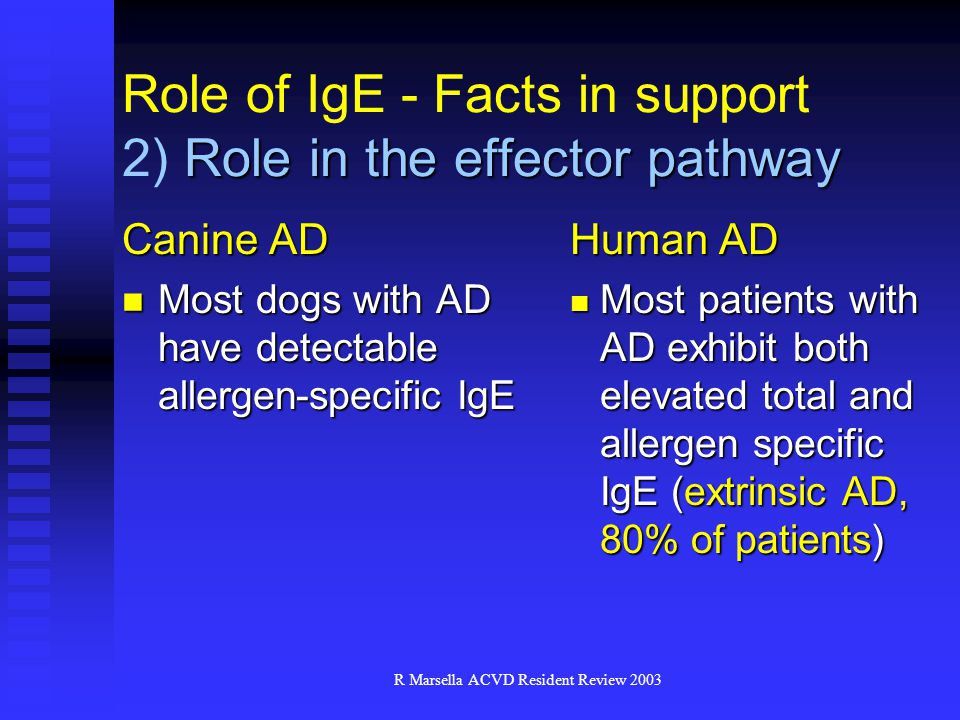 Role of IgE - Facts in support 2) Role in the effector pathway