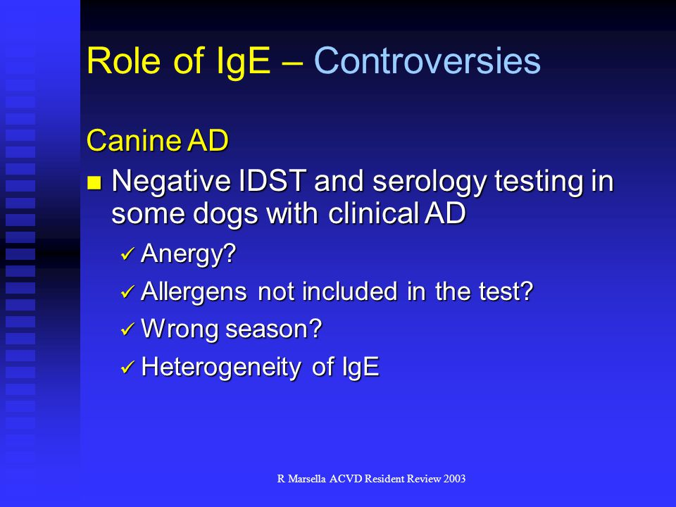 Role of IgE – Controversies