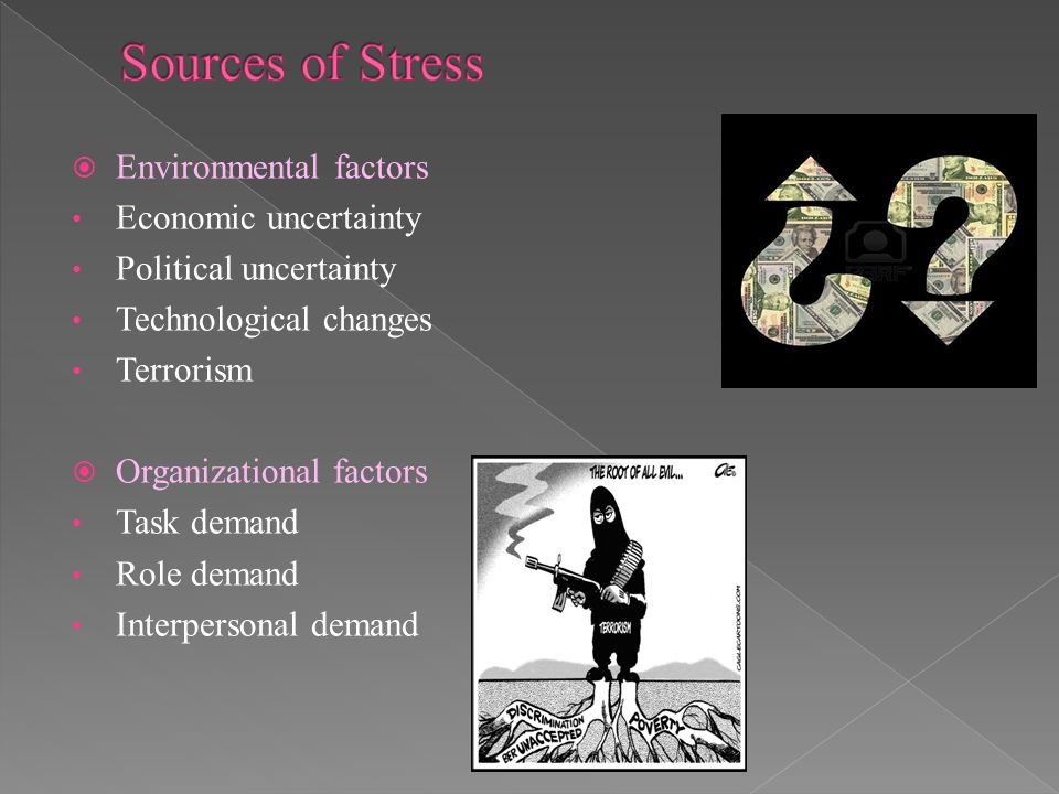 Sources of Stress Environmental factors Economic uncertainty