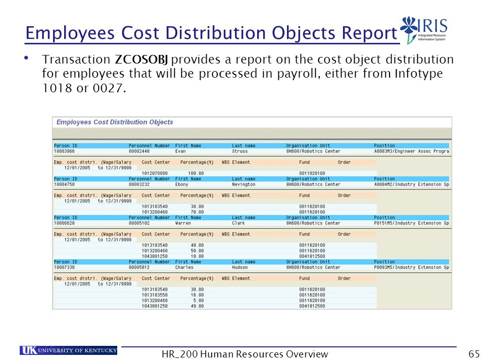 Employees Cost Distribution Objects Report
