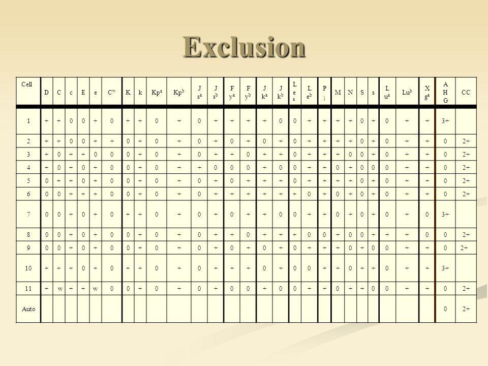 Exclusion Cell. D. C. c. E. e. Cw. K. k. Kpa. Kpb. J. sa. sb. F. ya. yb. ka. kb. L.