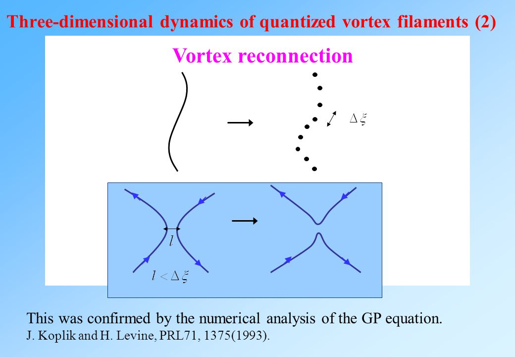 Three-dimensional dynamics of quantized vortex filaments (2)