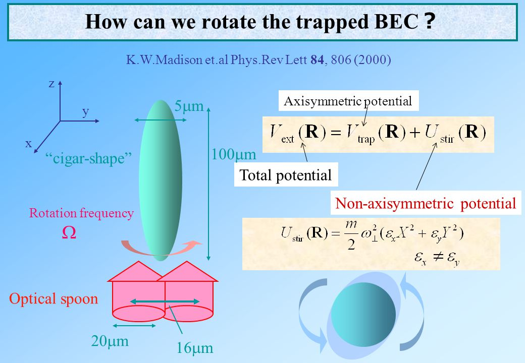 How can we rotate the trapped BEC?