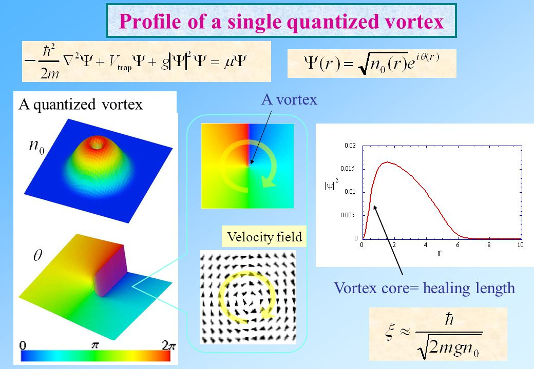 Profile of a single quantized vortex