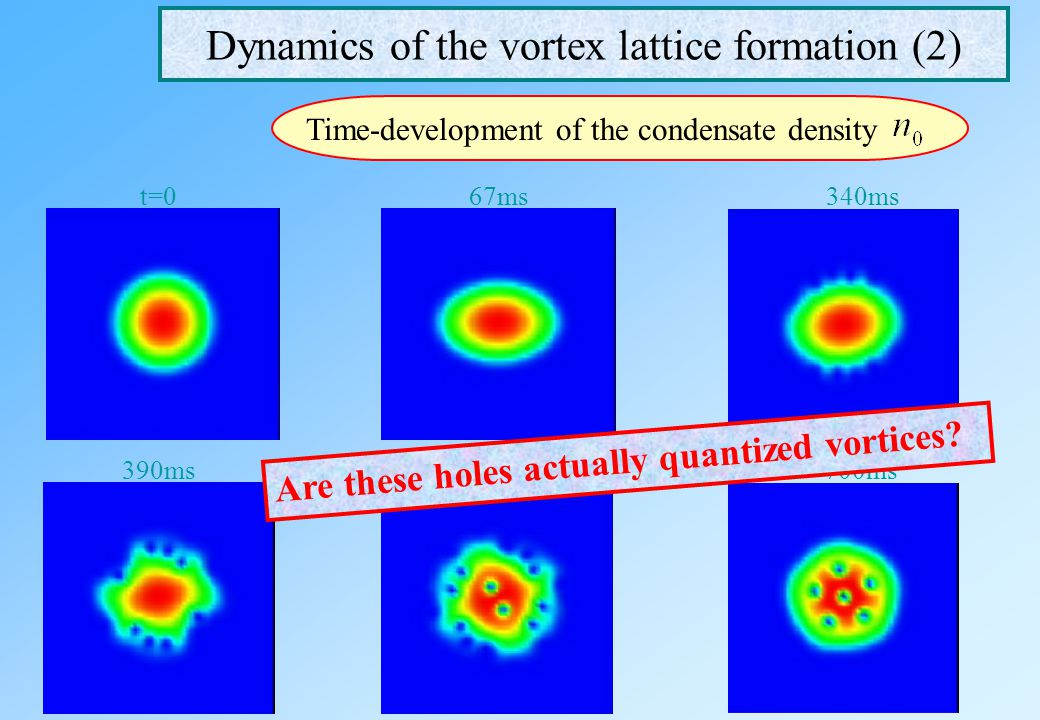 Dynamics of the vortex lattice formation (2)