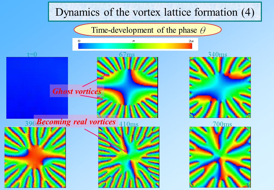 Dynamics of the vortex lattice formation (4)