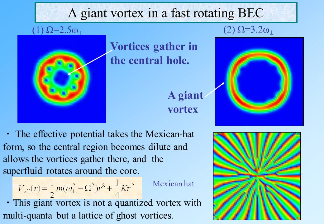 A giant vortex in a fast rotating BEC