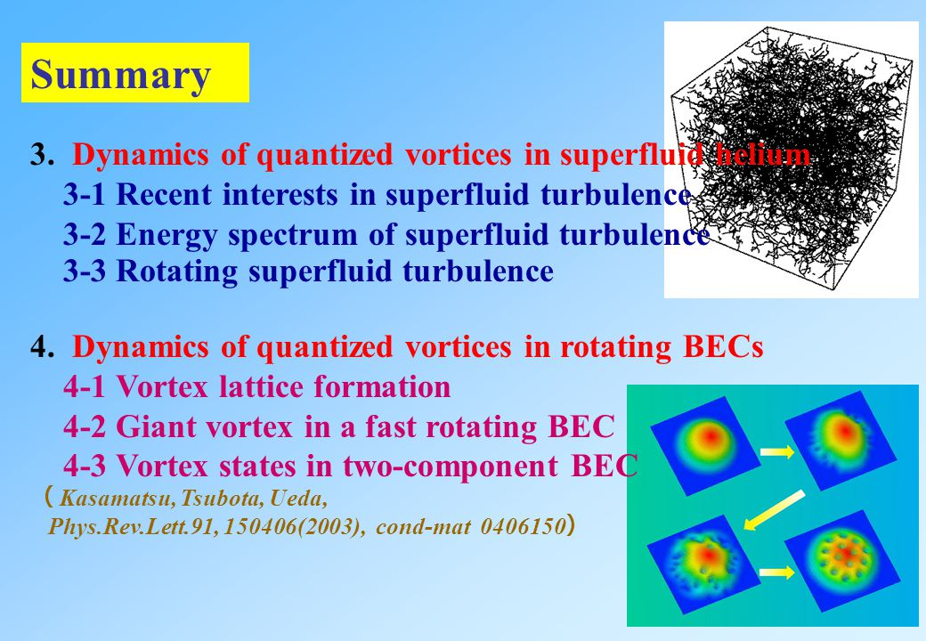 Summary 3. Dynamics of quantized vortices in superfluid helium