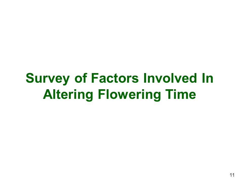Survey of Factors Involved In Altering Flowering Time