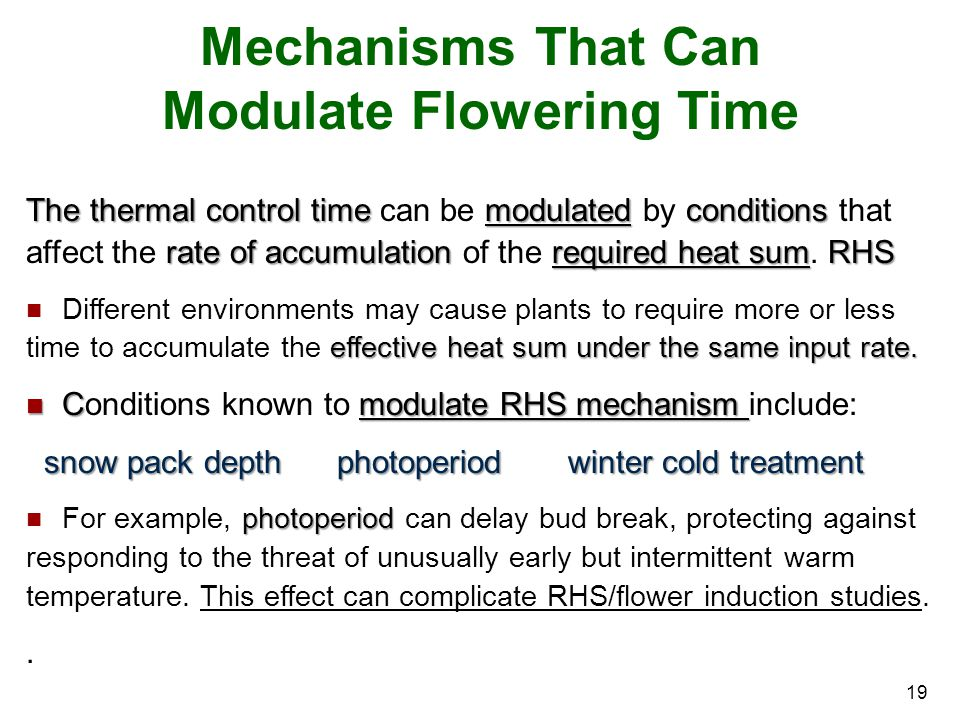 Mechanisms That Can Modulate Flowering Time