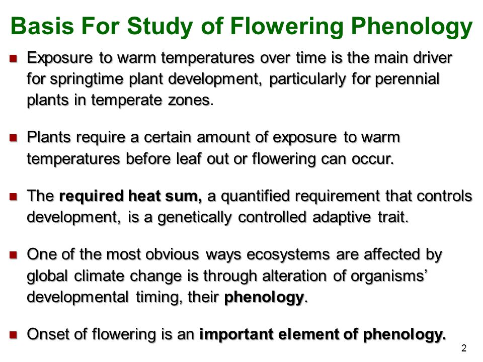 Basis For Study of Flowering Phenology