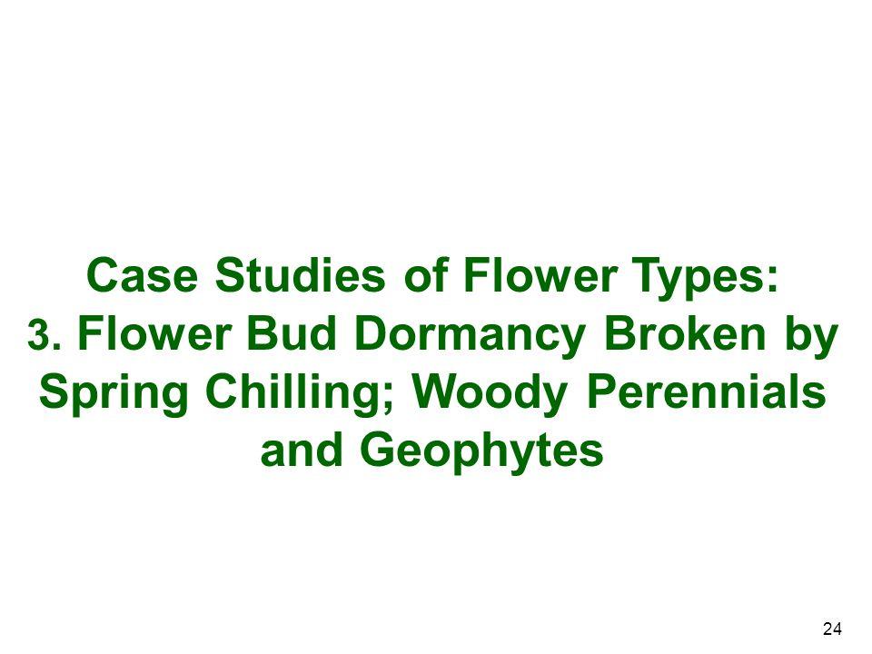 Case Studies of Flower Types: